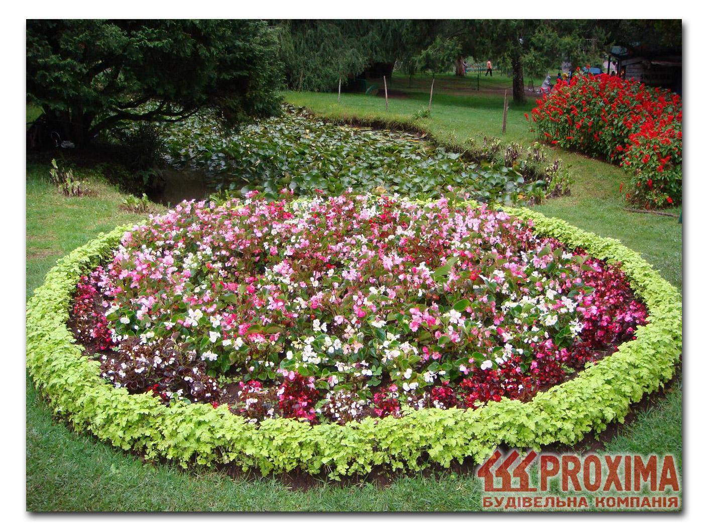 Оформление клумб однолетними цветами фото