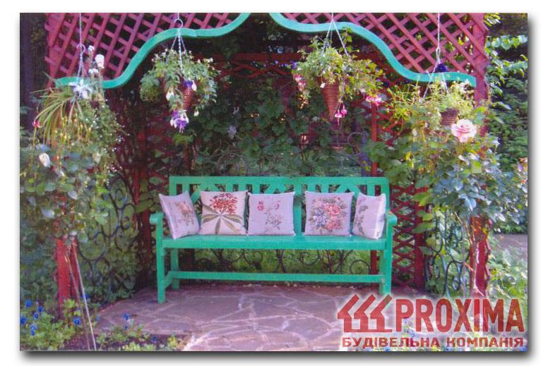 Плетущиеся растения для беседки фото