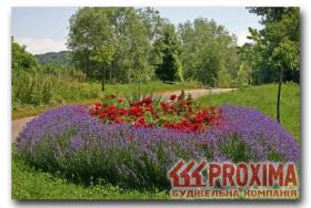 Re: Подбор растений для оформления цветника.